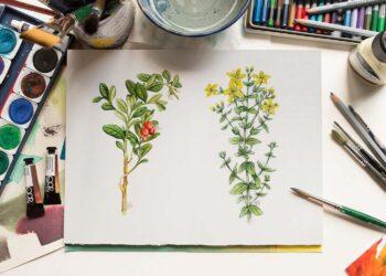 akvarelové kresby
